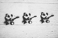 Panda Axing (Leighton Wallis) Tags: graffiti stencil panda guitar australia melbourne victoria fender vic