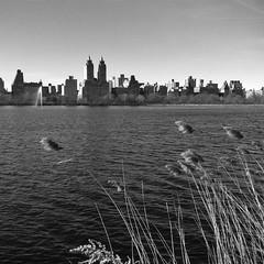 New-York_130311-143.jpg
