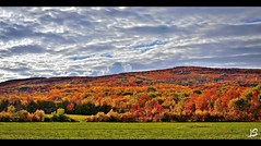 Autumn colors along the niagara escarpment - stitched panorama (Jeff S. PhotoArt) Tags: blue autumn red orange mountain ontario canada fall leaves landscape collingwood niagra escarpment