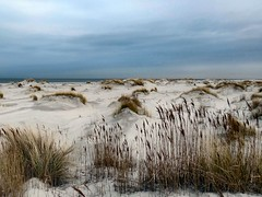 Cold Sands. The North Sea, near Strandpaal 7, Schiermonnikoog, Friesland, The Netherlands (Rana Pipiens) Tags: flickraward mygearandme blinkagain schiermonnikoogfrieslandthenetherlands demarlijnschiermonnikoogthenetherlands