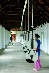 Islamic Violins (Together With Video n Sound Installation at Kochi Muziris Biennele- March 2013)