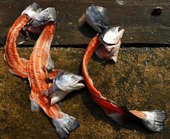 Heads&Tails (Hodd1350) Tags: christchurch sony salmon quay dorset heads bones tails mudeford a77