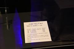 リオンの壁紙プレビュー