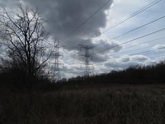 power (timp37) Tags: lake lines march illinois oak power hills powerline heights palos turtlehead 2013