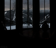 Snacks at Dusk (CoryHenchen) Tags: winter wild snow nature beautiful mt stowe vt mansfield