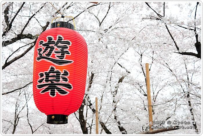 平野神社 (8).jpg