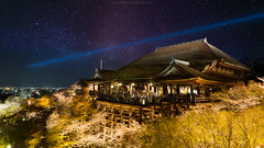 Sakura Light Up @ Kiyomizudera temple (Jiratto) Tags: city sky flower japan night landscape temple spring ancient kyoto    sakura     kiyomizu      jiratto