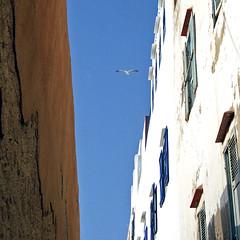 le catene del cielo (francesco melchionda) Tags: sky colors teal maroc