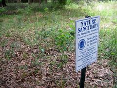 Sanctuary sign (floridahikes) Tags: park florida hiking trail karst sinkhole kanapaha floridahikes brokenarrowbluff gainesvillenature