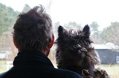 Me and Otto...same hair style (osto) Tags: dog chien pet animal cane denmark europa europe sony hond perro terrier zealand otto pies dslr scandinavia danmark cairnterrier a300 kpek sjlland  osto alpha300 osto april2013