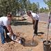2013 Earth Day SGA Treeplanting