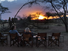 Beautiful Sunset at Kati Kati (benyeuda) Tags: sunset camp tanzania lodge safari bonfire serengeti wildernesslodge africansafari katikati beautifulsunset seronera serengetinationalpark africansavannah tentedcamp centralserengeti africanwilderness seroneravalley drinksbythebonfire