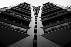 Pair (miguel_lorente) Tags: city blackandwhite bw holland building netherlands architecture facade cityscape structure symmetry bnw zaandam