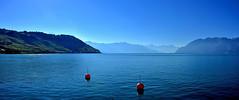 Cinquante nuances de bleus (Diegojack) Tags: nikon nikonpassion d7200 paysages panorama lman lac cully lavaux
