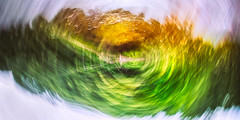 Eternally Spinning (ScottNorrisPhoto) Tags: abstract landscape trees water reflection spin motion color colorful saturated bright green orange intentionalcameramovement pan wide panorama warmtones photography photooftheday photoaday explore 365project circles scottnorrisphotography milwaukee wisconsin usa