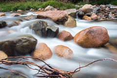 Yaseppochino (OR_U) Tags: 2016 oru uk scotland cairngorms highlands riverluineag river water le longexposure motionmovement twig rocks wet rapids lochmorlich pizzicatofive