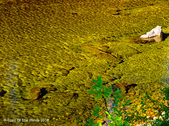 Lake Fork Creek (jimgspokane) Tags: lakeforkcreek creeks mountains camping idahostate forests nikonflickraward otw