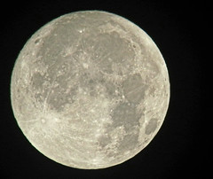 Moon091616 Harvest Moon (kendoman26) Tags: moon fullmoon luna crater fuji fujifinepix fujifinepixs1 topazdetail topazsoftware tonightsmoon