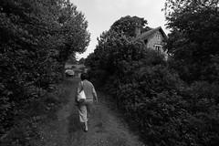 Memory Lane (Colin Kavanagh) Tags: memory lane memorylane blackandwhite blackwhite country rural rustic woods tress plants laneway trail naturetrail old house