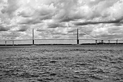 Arthur Ravenel Jr. Bridge - Charleston/Mount Pleasant - South Carolina (Meridith112) Tags: blackandwhite black blackwhite white bw mono bridge sc southcarolina south mountpleasant charlestoncounty charleston water river cloud clouds summer august 2016 nikon nikon2485 nikond610 cooperriver arthurravenelbridge cablestayedbridge parsonsbrinckerhoff trav waterfrontpark