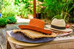 C'est la fin de l't, on range les chapeaux...-6652 (brijjour) Tags: chapeaux couleurs jardin soleil chaleur t