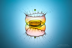colored crown (baummarco) Tags: krone drop droplet crown splash waterdrops liquid highspeed tropfen wasserkrone strobist watercrown wassertopfen waterplash dropondrop 430exii canonspeedlite430exii 5dmkii canoneos5dmkii yongnuoyn460 dropcollision rf602 canonef100mmf28lmacroisusm yongnuorf602 tropfenauftropfen
