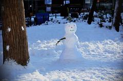 (Rachel Citron) Tags: snow eastvillage kids children blog snowman nikon downtown nemo frosty gothamist blizzard curbed newyorktimes thelocal publicpark timeoutnewyork timeoutny newyorkmag thenytimes thelocaleastvillage
