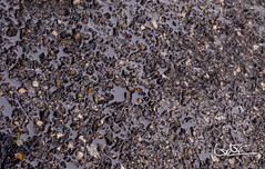 Asfalto mojado (Vctor M. Sastre) Tags: textura water agua colores asphalt texturas sensaciones