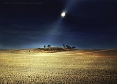 moonshine (PhotoArt Images) Tags: moon harvest australia moonlit moonlight ni moonshine wheatcrop nikon2470mm28 flickrsfinestimages1 flickrsfinestimages2 bestevergoldenartists photoartimages besteverexcellencegallery vigilantphotographersunite vpu2