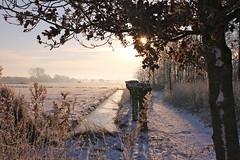 IMG_8676 (tinehendriks) Tags: winter ochtend 2012 koud leijen zonsopkomst deleijen zonkomtop