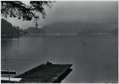 Fairytale in Bled III (Sobanland) Tags: winter blackandwhite panorama white lake holiday snow black cold film church nature beautiful fairytale analog 35mm vintage relax landscape lago island 50mm mirror amazing loneliness desert nowhere happiness om10 retro east slovenia bled romantic slovenija inverno ricordi castello zima bianco remind freddo nero romantico easterneurope biancoenero analogica est specchio oldtimes isola nopostproduction bello pellicola favola lepo rullino lepa bukur esteuropa foag exyugo