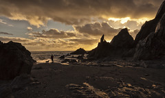 one man and his dog (explored) (yadrad) Tags: sunset dog beach silhouette southdevon westcombe