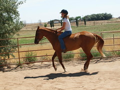 E and Dunny, bareback at canter (lostinfog) Tags: horse colorado canter e30 dunny 2012 201208 riderem