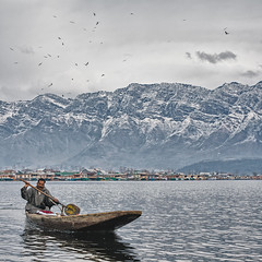 Kashmir | Dal Lake | Himalaya (wazari) Tags: life road travel winter people india mountain lake snow cold tourism beautiful landscape photography asia heaven paradise awesome islam photojournalism windy journey malaysia environment kashmir srinagar himalaya whitesnow snowwhite wanderer jammu kashmiri heavenonearth traveler photojournalist shikara windingroad dallake thephotographer travelphotography jammuandkashmir lifeontheedge pahalgam himalayanrange sonamarg paradiseonearth incredibleindia amazingindia sonmarg destinaton treveler beathtaking wazari himalayarange wazariwazir malaysianphotojournalist roadlesstreveled shikarawallah