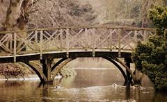 Wooden Bridge (omikelo) Tags: park bridge water architecture easter landscape wooden birkenhead