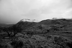 White tips of Snowdon..... (Dafydd Penguin) Tags: blackandwhite wales landscape nikon sigma snowdon snowdonia northwales d600 sigma14mm