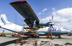 OPF_2013_03-19.jpg (LASCAR35) Tags: aviation scrapyard opf antonov opalocka an12b srxtranscontinental uk120005