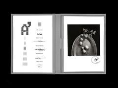 Caja de fototografías: Ribas i Prous
