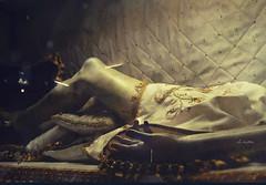 The Body < > El Cuerpo