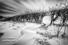 When the wind blows (John Farnan Photography) Tags: scotland snowdrifts snowfalling landscapescenery monolandscape blackandwhitemonomonochromatic scottishlandscapephoto snodrifting