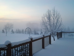 Snow & Frost.jpg