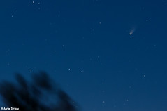 Comet Pan-Starrs #4 (ats8110) Tags: night nikon michigan comet d300 panstarrs deepskystacker