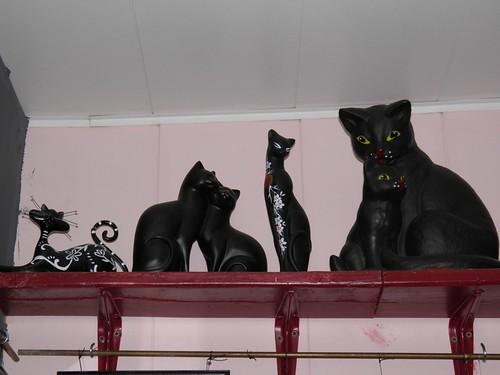 Коты на полках // Cats on shelf ©  alexyv