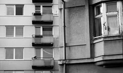 old vs. new / staré vs. nové (ondey) Tags: street city houses windows white house black window republic czech south bohemia okno republika dům budejovice okna město ulice budweis ceske republike domy česká budějovice české budejky budejce suché pětidomí budejice vrbné