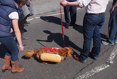 Hot Dog (davemason) Tags: dog london marathon greenwich strangers londonist aperturewoolwich