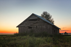 Sunset Behind A Barn And A Birch (k009034) Tags: 500px wooden copy space finland matkaniva oulainen agriculture architecture building clouds countryside dramatic sky evening fields mist nature night no people old rural summer sunset teamcanon copyspace dramaticsky nopeople