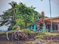 Tortuguero, Costa Rica (ashabot) Tags: