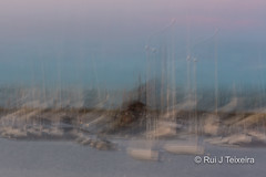 Boston & Cape Cod 2016  Rui Teixeira-47 (Rui_Teixeira) Tags: andrea boston cape chistina cod family garrido hyannis ma mary summer marycarmen water sunrise