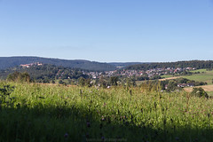 Dilsberg in August 2016 V (boettcher.photography) Tags: august summer sommer 2016 neckargemnd germany deutschland dilsberg badenwrttemberg rheinneckarkreis meadow wiese sashahasha boettcherphotography