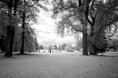 Out of the Wilderness (jrseikaly) Tags: montral qubec canada ca black white infrared portrait bnw bw ir nature tree trees person figure jack seikaly